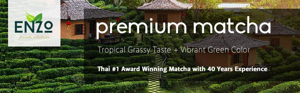 thai matcha green tea farm