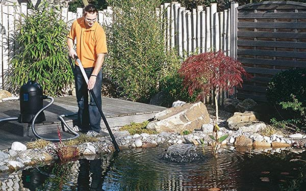 best pond cleaner