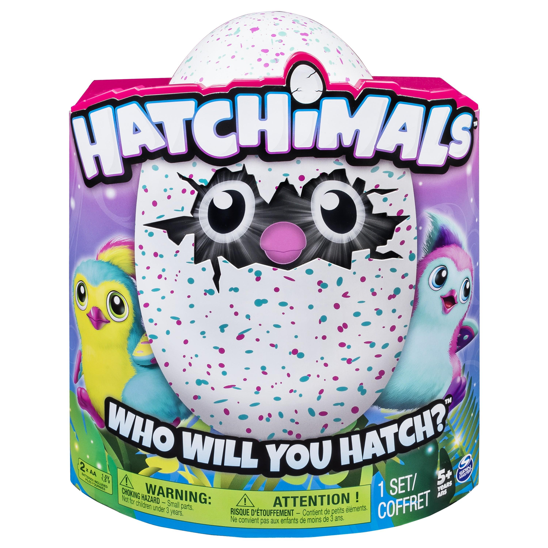 Amazon.com: Hatchimals Penguala - Teal/Pink: Toys & Games