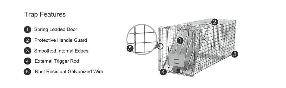 Amazon.com: Havahart 1079 - Trampa de 1 puerta para ...