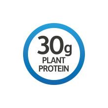30 grams plant protein