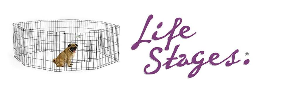 LifeStages Exercise Pen
