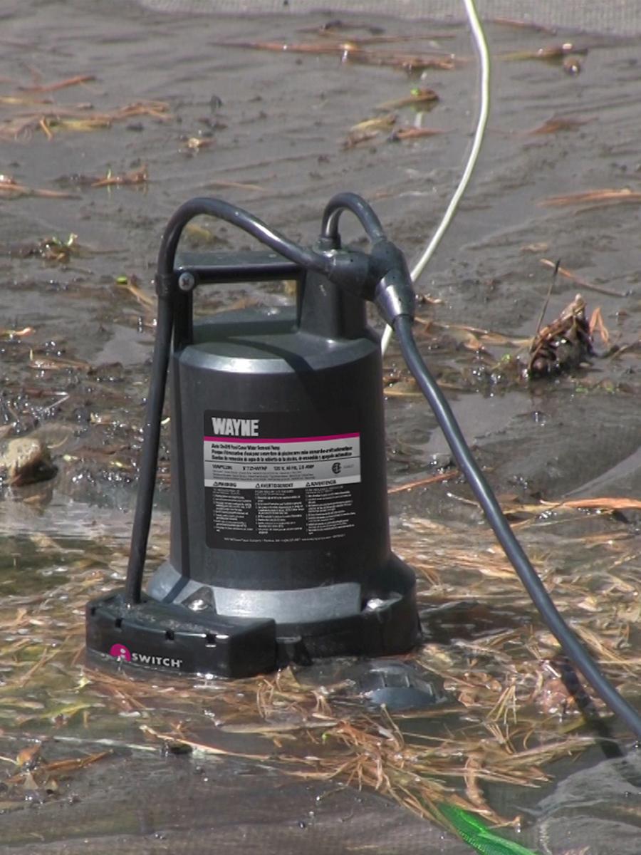 Wayne Wapc250 1 4 Hp Automatic On Off Water Removal Pool