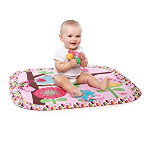 Amazon Com Bright Starts Charming Chirps Activity Gym Pretty In Pink Baby