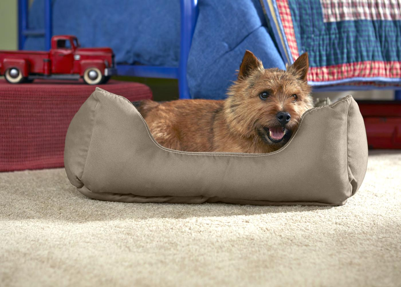 Amazon Com Stainmaster Comfy Couch Pet Bed Small 26 By