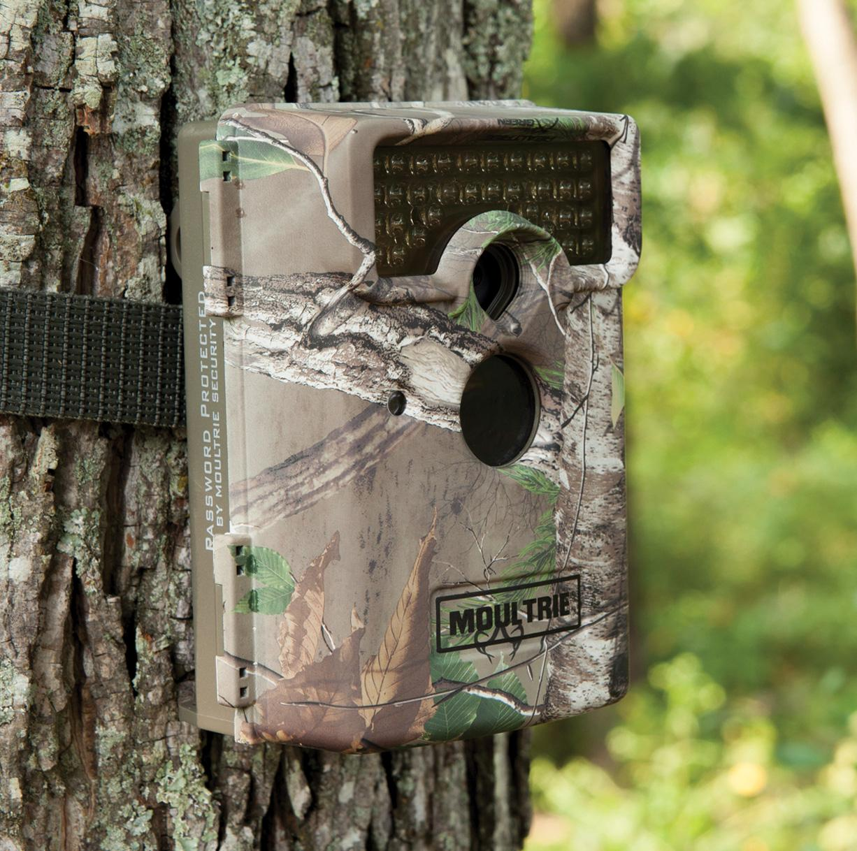 Amazon.com : Moultrie M-1100i Game Camera : Sports & Outdoors