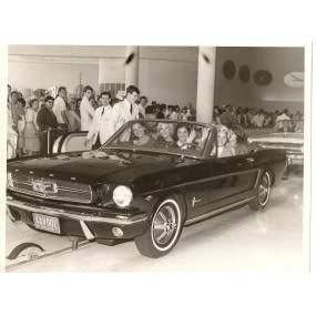 Mustang Fifty Years Celebrating America S Only True Pony Car