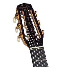 Amazon.com: Gitane DG-370 Professional Gypsy Jazz Guitar - Modèle