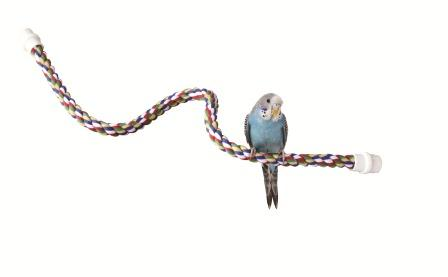 by Booda Products No Perch Cable 56114