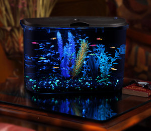 Panaview aquarium kit with led lighting and for 5 gallon fish tank filter