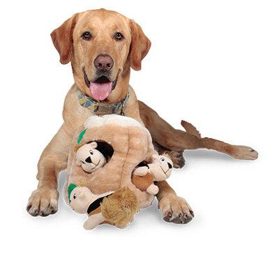 Pet Supplies : Pet Squeak Toys : Outward Hound Kyjen 2657