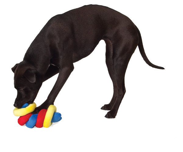Kyjen Plush Puppies Iqube Dog Toys
