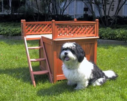 Amazon Com Merry Pet Mps002 Wood Room With A View Pet