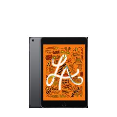 iPad mini (7.9-inch)