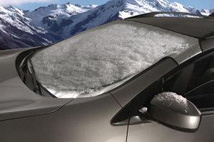 Intro-Tech Automotive Snow Shade Image