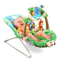 Amazon Com Fisher Price Rainforest Bouncer Infant