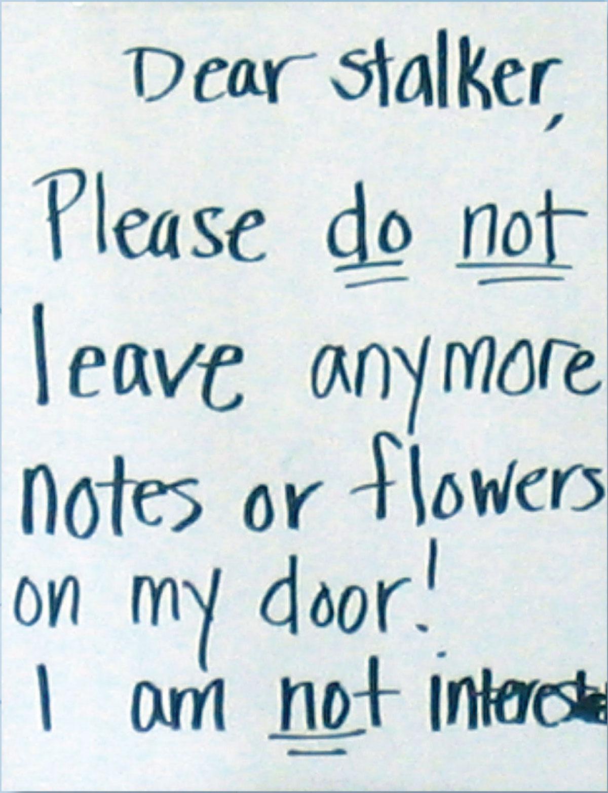 Dear Stalker ...