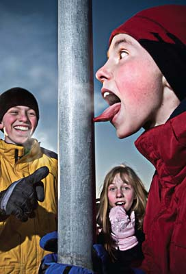 Front Tongue On Pole