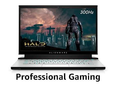 Professional Gaming laptop