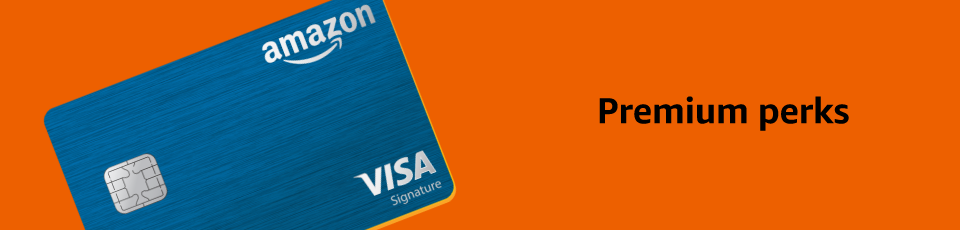 Amazon amazon rewards visa signature card credit card offers reheart Choice Image