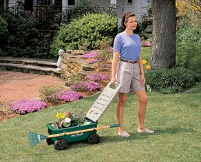 Amazon Com The Ames Companies Inc Cart Lawn Buddy Poly