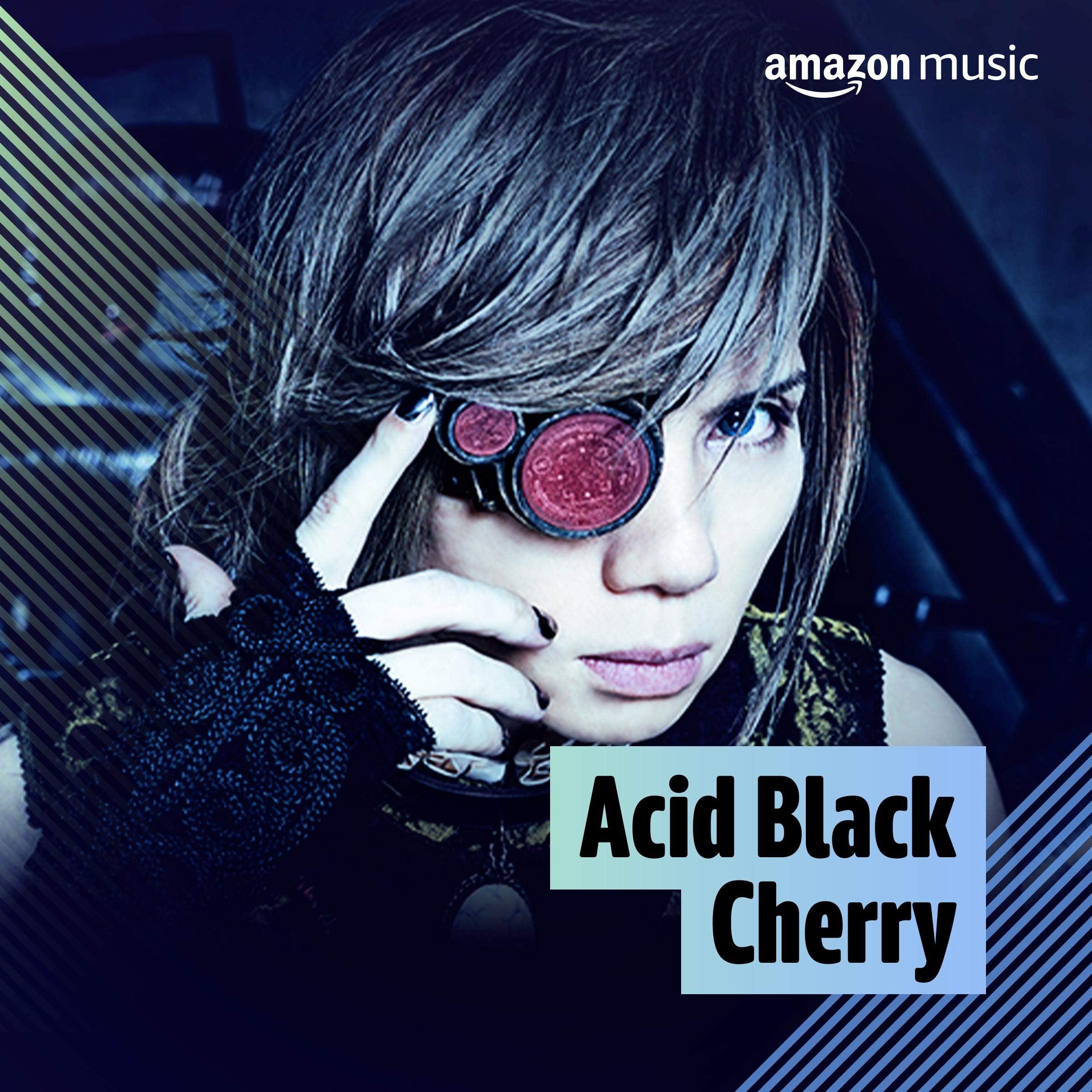 Acid Black Cherryを聴いているお客様におすすめ
