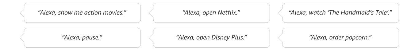 Examples of Alexa commands.