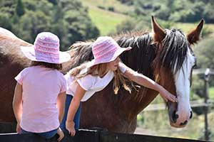 Photo of girls and horse, shot with AF-P DX NIKKOR 70-300mm f/4.5-6.3G ED, highlighting fast AF