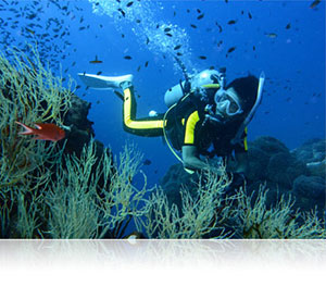 Nikon 1 AW1 photo of a scuba diver on a reef, showing rugged use