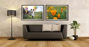 photo of two D3400 photos on a wall over a couch, highlighting high quality imagery