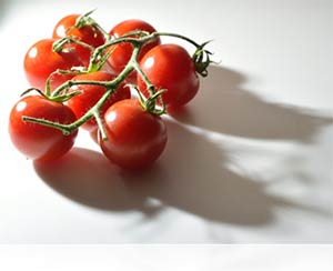 Photo of cherry tomatoes shot using the constant light of the LD-1000 LED Movie Light