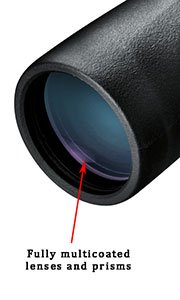 https://images-na.ssl-images-amazon.com/images/G/01/electronics/binoculars/nikon/2011/Mon.10x42-lft.front---Objective-Lens._.jpg