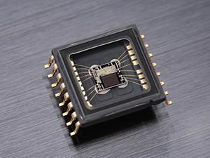 D300S Image Sensor