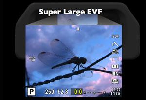 Super Large EVF