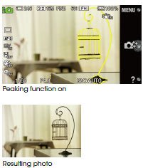 https://images-na.ssl-images-amazon.com/images/G/01/electronics/cameras/dslr/sony/2011/nex5n/FocusConfirm._.jpg