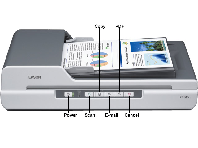 EPSON GT-9600 DRIVER FOR WINDOWS