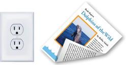 Plug & Dolphin