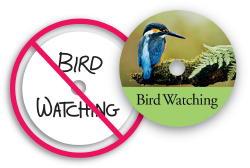 Bird Watching CD