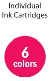 6 Color