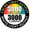 3000 Lumens