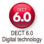 Dect 6.0