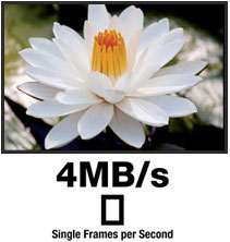 4MB/s Single Frames per Second
