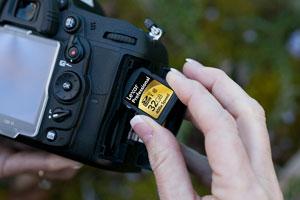 400x in Nikon