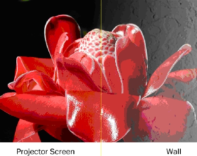 Can You Use White Paint For A Projector Screen