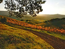 Sonoma Wine Country Stay with Wine Tasting and Drink Vouchers or Wine Bottles