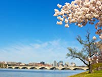 Tickets for a Potomac River Cherry Blossom Cruise