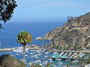 Relaxing Catalina Island Two-Night Stay with Daily Breakfast, WiFi, and Champagne