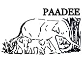 PaaDee