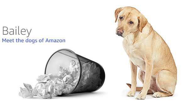 Dogs of Amazon