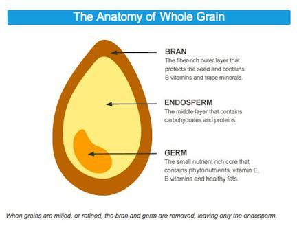 Whole Grain Foods And Kidney Disease